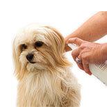 Hygienické potreby, krémy, spreje, emulzie